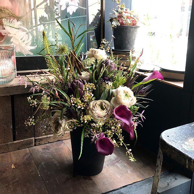 galleryの祝い花💐温度、湿度共に高くなっ...