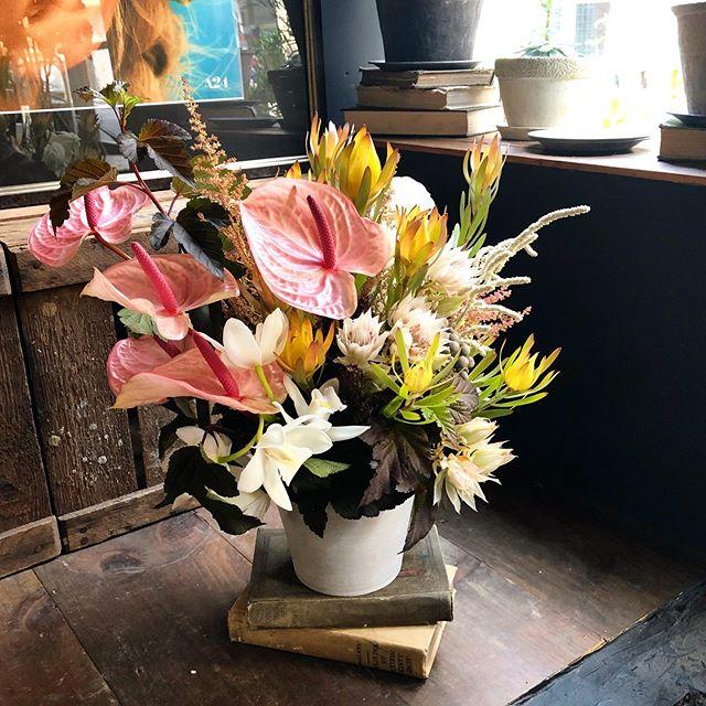 カレー屋さんへの祝い花💐pink×white×curr...